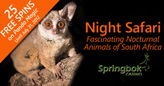 Take a Night Safari and Enjoy Fascinating South African Nocturnal Animals