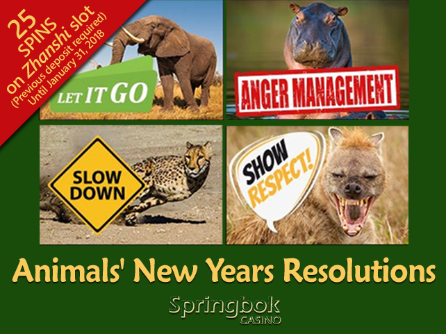 Springbok Casino celebrating New Year's resolutions